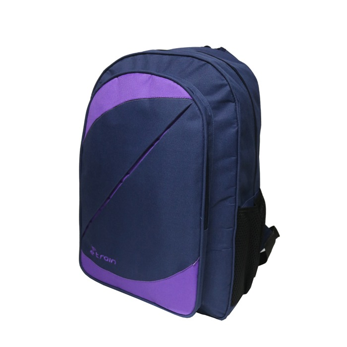 "E-train Backpack bag, Fits Up to 15.6"" Purple*blue"